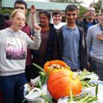 hallmoor students celebrate the harvest
